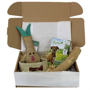 Eco Friendly Gift Box / Gift set for Eco Conscious Dog 2 -  Main