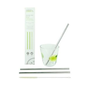 Stainless Steel Straw Pack - 2 Straws & Brush