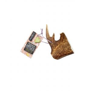 Green & Wilds Fallow Antler Dog Chew (Extra Large)