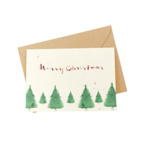 Christmas Forest (Pack of 5) - Wildflower Plantable Card